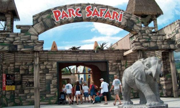 "Islamophobic Panic Surrounding ""Safarigate"": A Fake Scandal Made Up by Notorious Racists!"