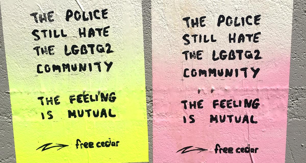 Déclaration de solidarité avec Cedar et la communauté queer et trans radicale de Hamilton